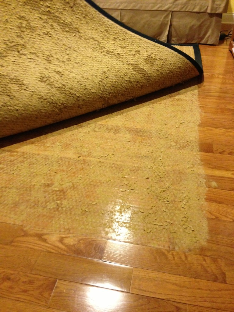 Pet Proof Rugs - Solutions for Resistant Rugs