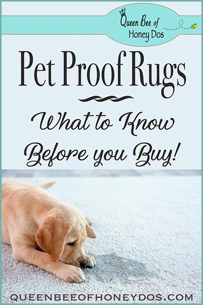 pet proof rug pin