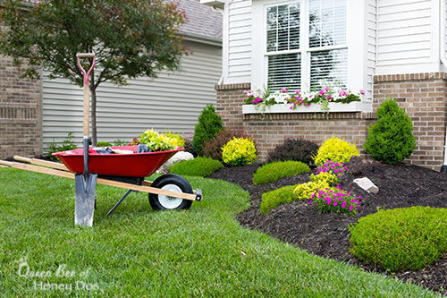 10 Ways to Increase Your Home's Value - landscaping - DIY