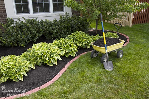 freshly mulched flower bed