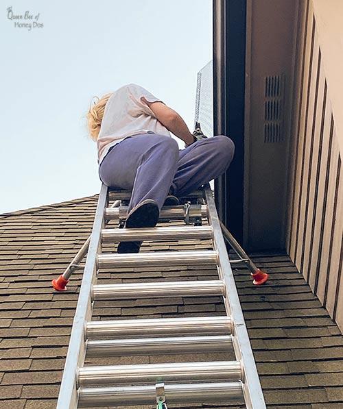Queen Bee of Honey Dos on ladder
